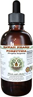 Forsythia Alcohol-FREE Liquid Extract, Organic Forsythia (Forsythia Suspensa) Dried Fruit Glycerite Hawaii Pharm Natural Herbal Supplement 2 oz