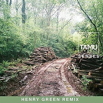 Senses (Henry Green Remix)