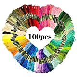 Hilos de Bordado de Hilo 100pcs Color del Arco Iris Seda del Bordado Punto de Cruz Hilos Pulseras Floss Floss Crafts DIY de Coser Accesorio (Color : 100 PCS, Size : A)