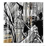 PERFECTPOT Cortina Opaca Jazz Cortinas de Salon con Ganchos Termicas Reduccion Ruido para Ventana Dormitorio Habitacion Oficina Cocina Decoración 280x250cm