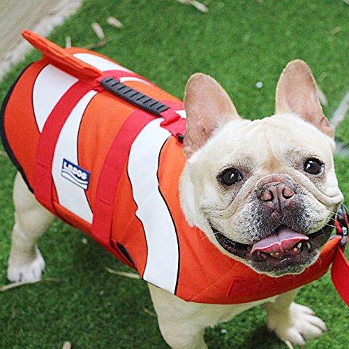 Hifrenchies Dog Life Jacket Shark Swimming Vest Pet Safety Swimsuit Floatation Life Vest for French Bulldog (M, Clown Fish)