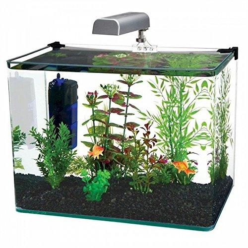 Penn Plax Curved Corner Glass Aquarium Kit, Filter, LED Light, Float Glass for Maximum Viewing...