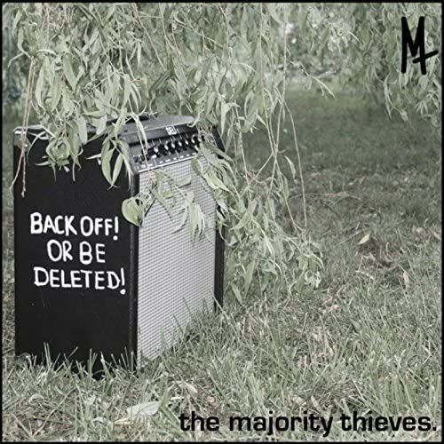The Majority Thieves