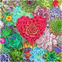 Wooden Jigsaw Puzzle for Adults - Succulent Love - 201 Pieces by Nautilus Puzzles