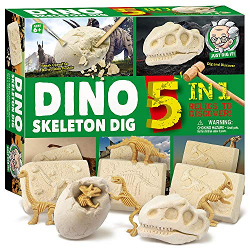 XXTOYS Dinosaur Skeleton Dig Kit for Kids Break Into 5 Bricks Fossils Excavation Set Interactive Excavating Toys Great Birthday Gift Idea, Contest Prize for Boys and Girls