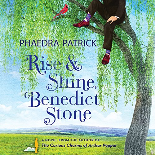 Rise and Shine, Benedict Stone audiobook cover art