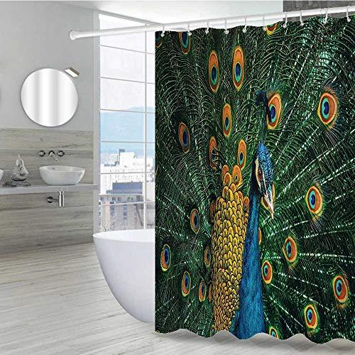 Interestlee Peacock Decor Stall Shower Curtain 72