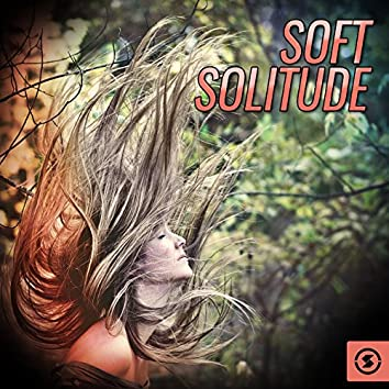Soft Solitude