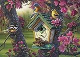 Buffalo Games - Kim Norlien - Springtime Beauty - 300 Large Piece Jigsaw Puzzle