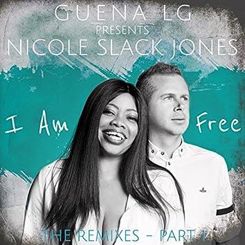 I Am Free (The Remixes, Pt. 1)