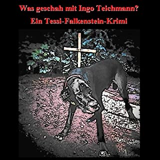 Was geschah mit Ingo Teichmann Titelbild