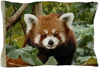 red panda sheets