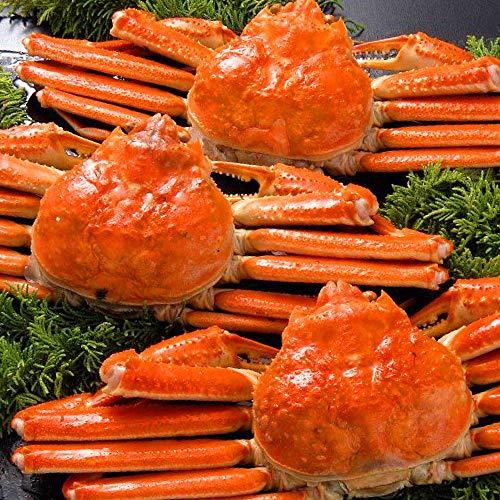 さっぽろ朝市 ズワイガニ 650g 姿 ずわいがに姿 本ずわい蟹 ボイル (650g×3尾)