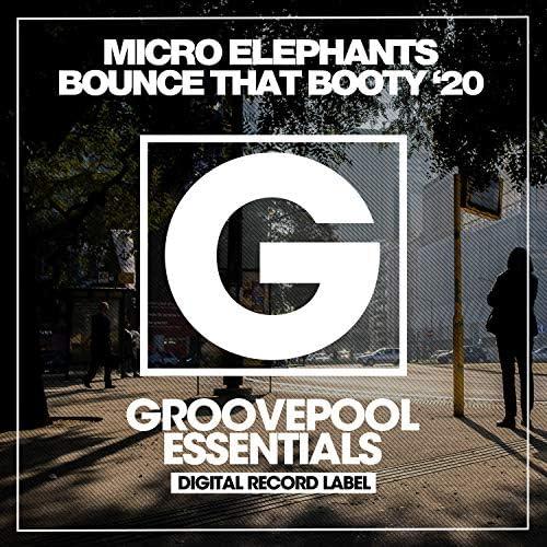 Micro Elephants & Spyro DJs