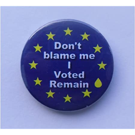 Stay in European Union 25mm Keyring Button Badge Zip Pull Option Stop Brexit