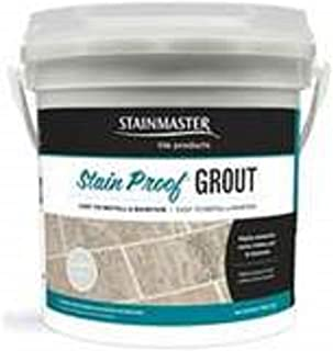 Best stainmaster stain proof grout kit Reviews
