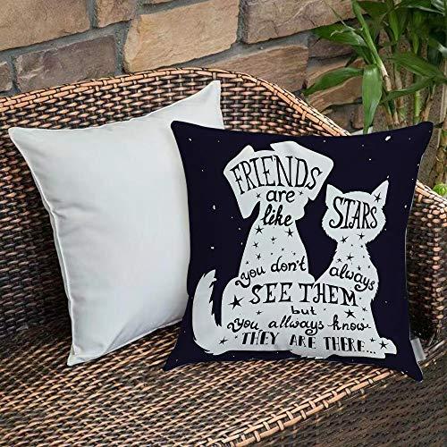 Dekokissen Kissenhülle,Hund, Freunde sind wie Sterne Zitat mit Silhouette von Haustieren auf einem Raum unter dem Mo,Kissenbezug Sofakissen Für Autos Wohnzimmer Schlafzimmer Dekor Kollektion 45x45cm