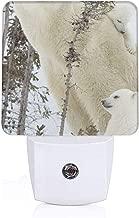 Polar Bear Plug-in LED Night Light Lamp with Light Sensor, Auto On/Off, Energy Efficient