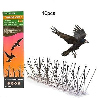 Betteros Acero Inoxidable Picos de Aves Estacas Pasadores Detector de Aves Fácil de Instalar Pájaros Picos