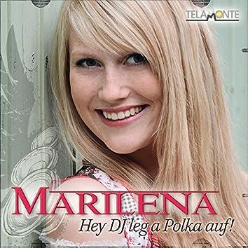 Hey DJ leg a Polka auf!