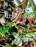 Ali Banisadr: Motherboard