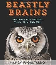 Best brains of animals Reviews