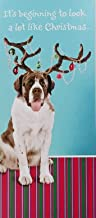 Best saint bernard christmas cards Reviews