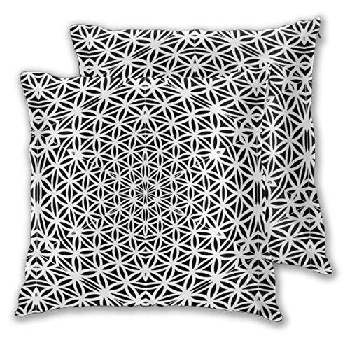 AEMAPE Soft Square Throw Kissenbezüge, Abstract Line 2 Pack dekorative Kissenbezüge Kissenbezüge für Sofa Schlafzimmer Auto 40X40 cm