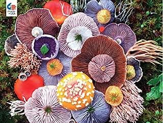 Ceaco Mushrooms Agaric Puzzle - 750 Pieces