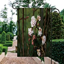 ALUONI Seasonal Garden Flags 12x18 inch Yard Flags - Viburnum Bodnantense Double Sided Design for All Seasons and Holidays...
