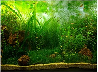 Aquarium Background Fish Tank Decorations Pictures PVC Adhesive Poster Water Grass Style Backdrop Decoration Paper Cling Decals Sticker(61x41cm)