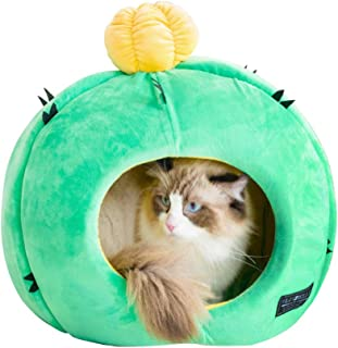 Best cactus dog bed Reviews