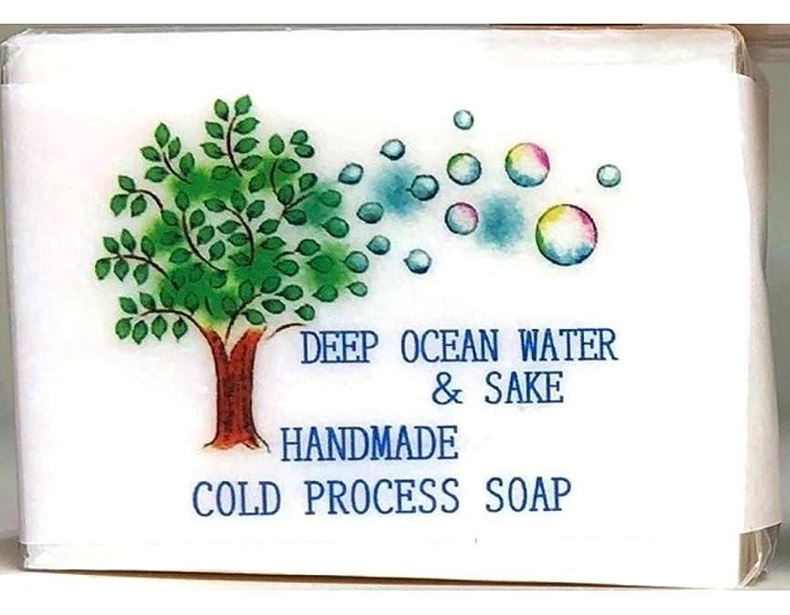 天正しい方程式心寿 日本酒 石けん 80g 素材にも製法にもこだわった無添加 安心安全 made in Japan
