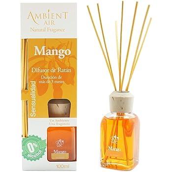 Ambientair Aromatizante Mango, difusor de Varillas sin Alcohol, ambientador Mikado con Varillas de ratán, aromatizante sin Alcohol con Fragancia de Mango