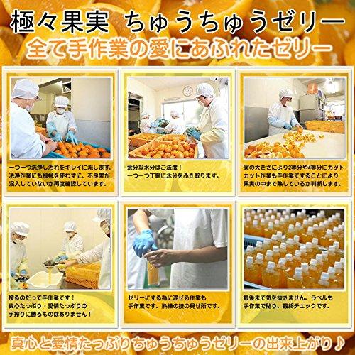 オレンジフーズ『ちゅうちゅうゼリーきまぐれセット』