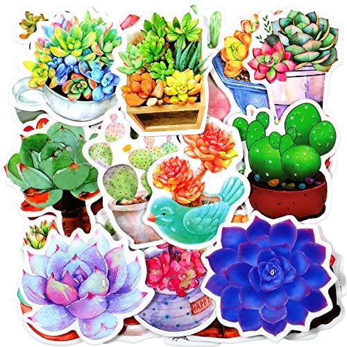 100 Adesivi di Fiori Piante Succulente Adesivi di Piante d'Acquerello Decalcomanie Graffiti di Cactus e Succulente Decorazione Floreale e di Piante per Bottiglie d'Acqua Laptop Scrapbook