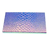 Vvciic Vuoto Pesce magnetica Scala del Blusher del rossetto Lip Gloss spazzole polvere omb...