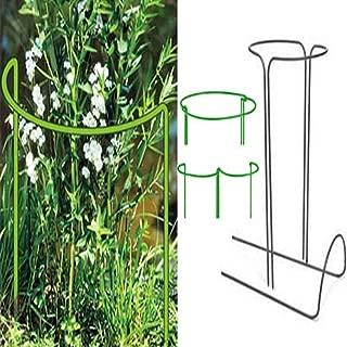 Amazon.es: 50 - 100 EUR - Estacas de jardín / Huertos urbanos y ...