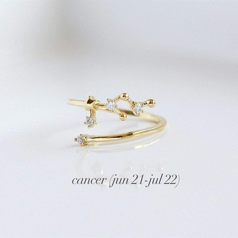 Acuario Oro Anillo de 12 Constelaciones de Cristal Simple Circ/ón Libra G/éminis Tauro C/áncer Aries Anillos Ajustables para Mujeres Regalos