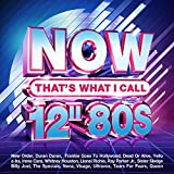 Various Artists: Now That's What I Call 12-Inch 80s / Various (Audio CD)