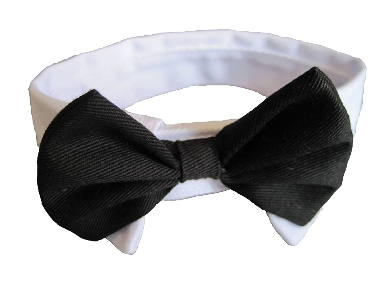 Dogs Kingdom Pet Adjustable Formal Bow Tie and Collar for dogs cat puppy supplies Black Extra Small 9-10-inches