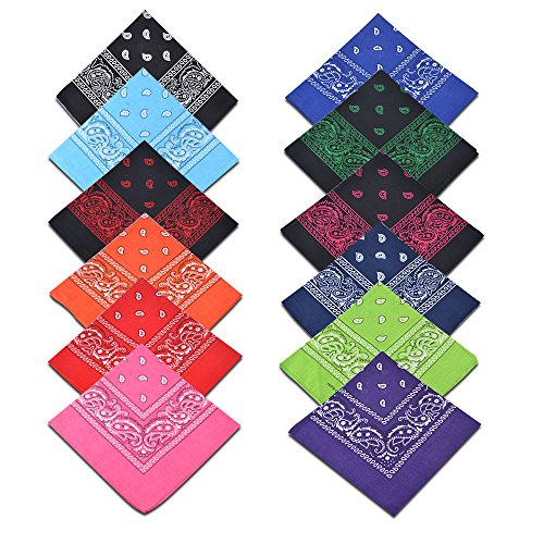 Alotpower Cotton Square Bandanas Paisley Print Headbands