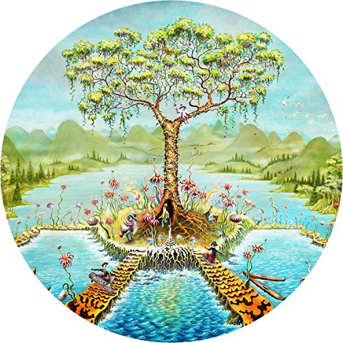 TIRE COVER CENTRAL Eyeland Gnome Island Spare Tire Cover (Select tire Size/Back up Camera Option in MENU) Dubois(c)