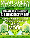 Mean Green Cleaning Recipes (English Edition)