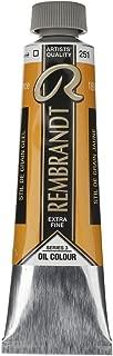 Royal Talens Rembrandt Artists' Oil Color, 40ml Tube, Stil De Grain Yellow (01052512)