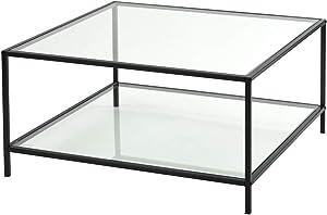 FURNITURE-R France Couchtisch aus Glas rechteckig Rahmen aus Metall Platte Glasplatte Oberfläche Wohnzimmertisch HLP 80 x 80 x 42 cm, schwarz