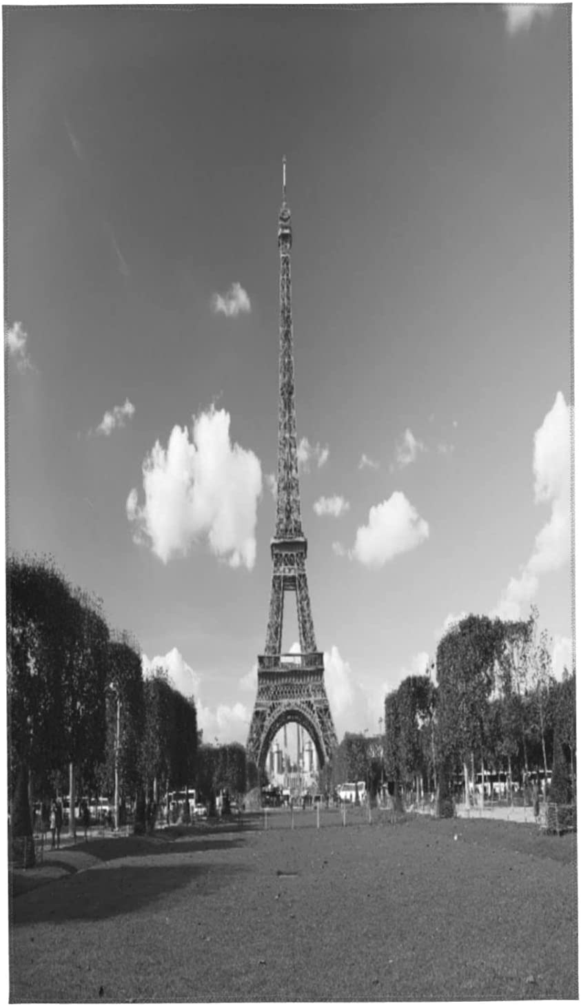 PATINISA Face Towel Set of 2 The Eiffel S Tower Paris France Spasm price in Selling and selling