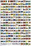 1art1 Flaggen Der Welt - Flaggen Der Welt 2010 Poster 91 x 61 cm