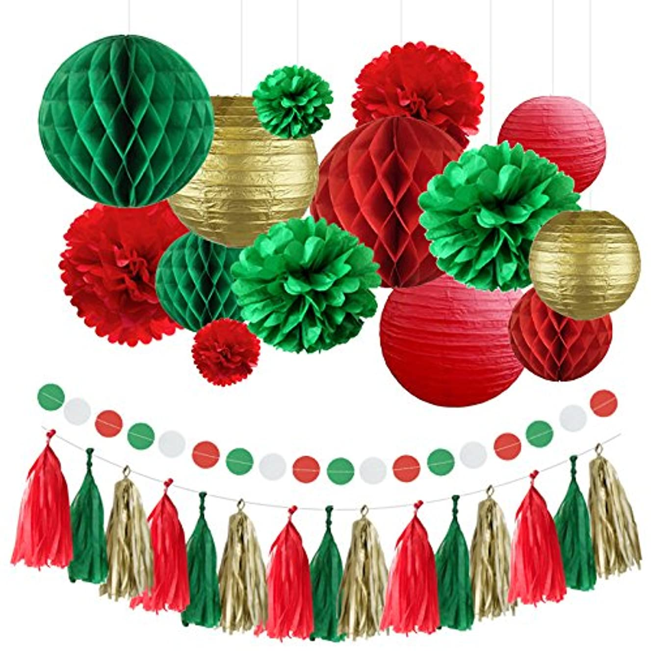 Christmas Decoration Set - Gorgeous 30pcs Assorted Paper Party Decorations Paper Lanterns Flower Honeycomb Ball Tissue Tassel Polka Dot Paper Garland for Fiesta Wedding Birthday Christmas Baby Shower