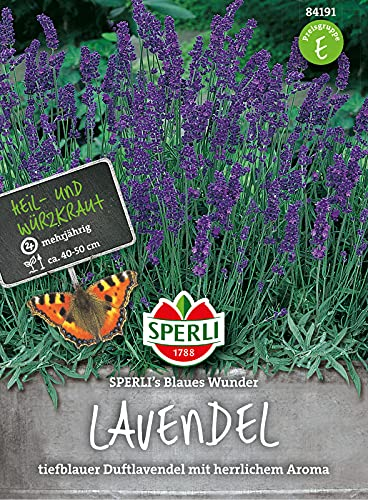 84191 Sperli Premium Lavendel Samen Blaues Wunder | Tiefblauer Duftlavendel | Mehrjährig | Lavendel Samen | Lavendel Saatgut